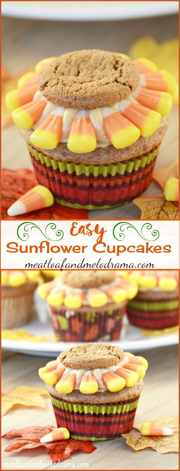 Easy Sunflower Cupcakes #sunflowercupcakes Easy Sunflower Cupcakes made with spice cake mix and decorated with gingersnaps and candy corn. An easy fall or Thanksgiving dessert! #sunflowercupcakes Easy Sunflower Cupcakes #sunflowercupcakes Easy Sunflower Cupcakes made with spice cake mix and decorated with gingersnaps and candy corn. An easy fall or Thanksgiving dessert! #sunflowercupcakes