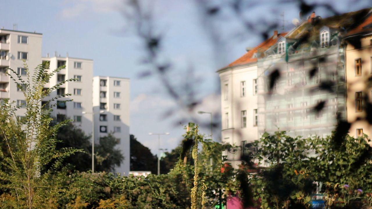 Prinzessinnengarten – Berlin, Germany