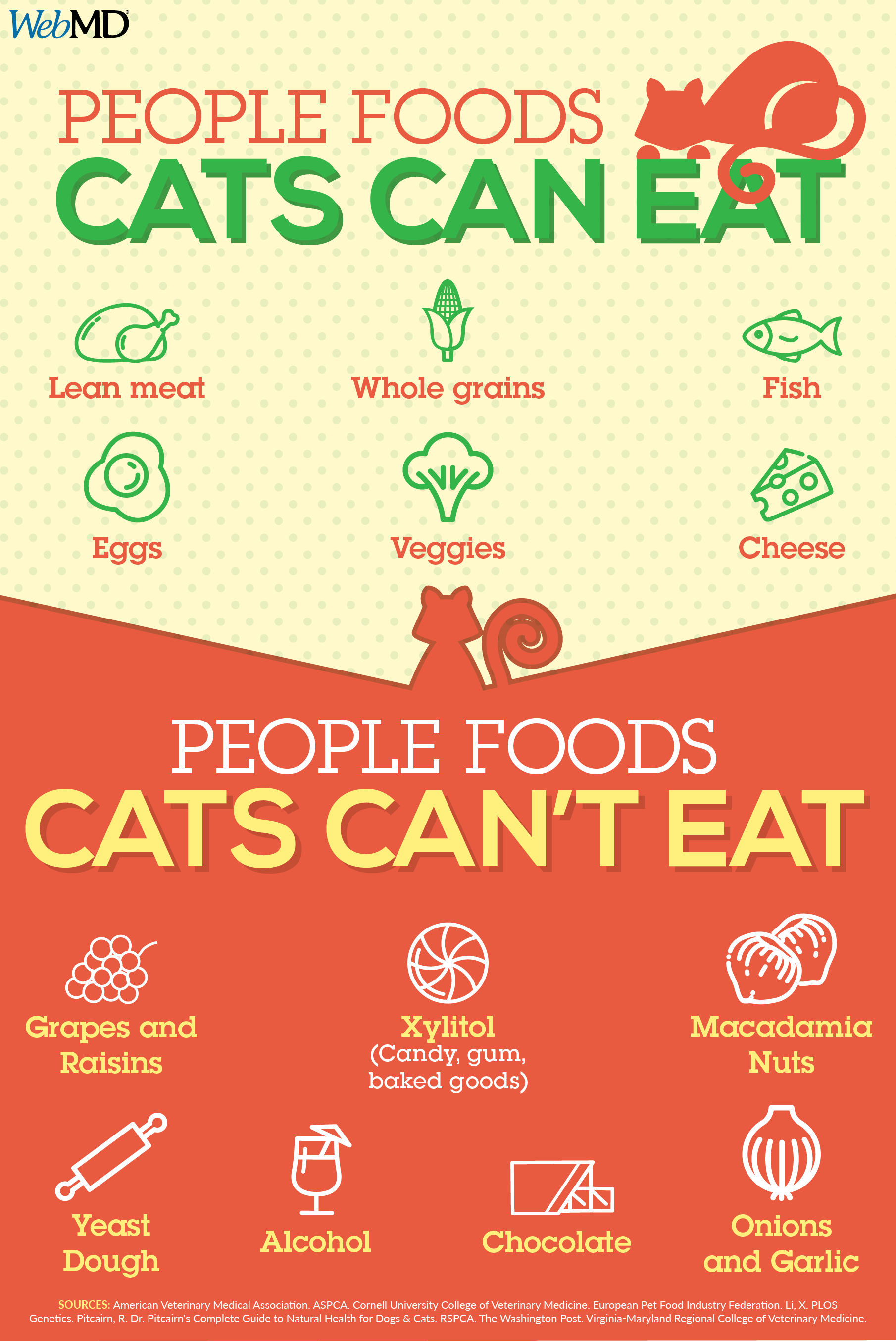 Can You Give Your Cat Table Scraps Find Out Which Foods Are Safe To Feed Your Feline And Which Ones To A Foods Cats Can Eat Homemade Cat Food Cat Nutrition