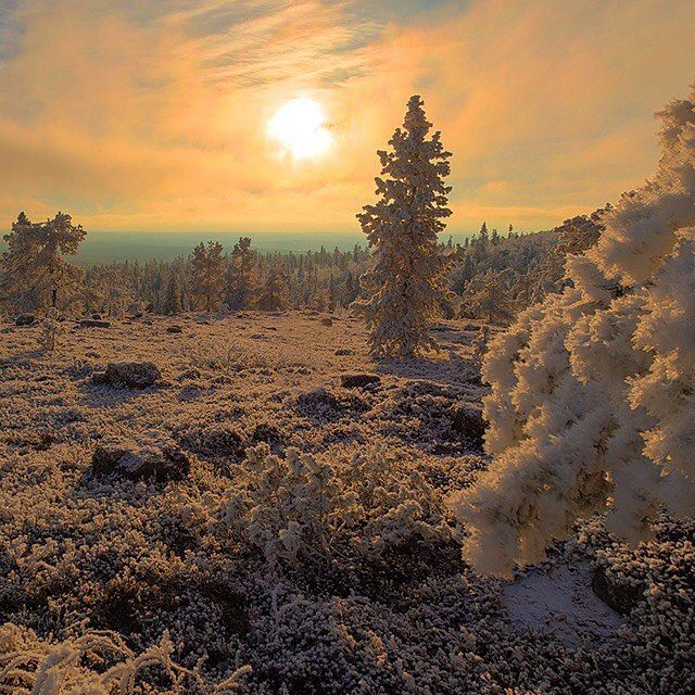 Laplands snow-coat crystallizes in the rising sun. #Finland #GoogleMaps  Photo added to Maps by Tapani Rantakokko by googlemaps