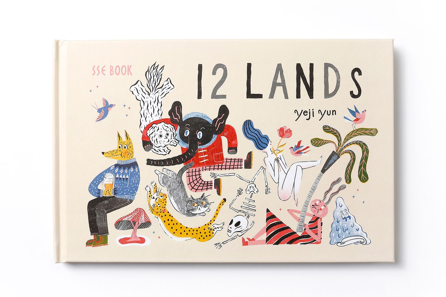 12 Lands is a new picture book by Yeji Yun and published by SSE project in 2015. This series of illustrations won the 2014 YCN Professional awards in UK.