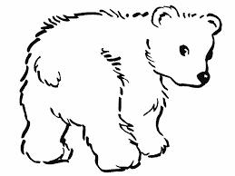 Resultado De Imagen Para Animales Para Colorear Polar Bear Coloring Page Bear Coloring Pages Polar Bear Color