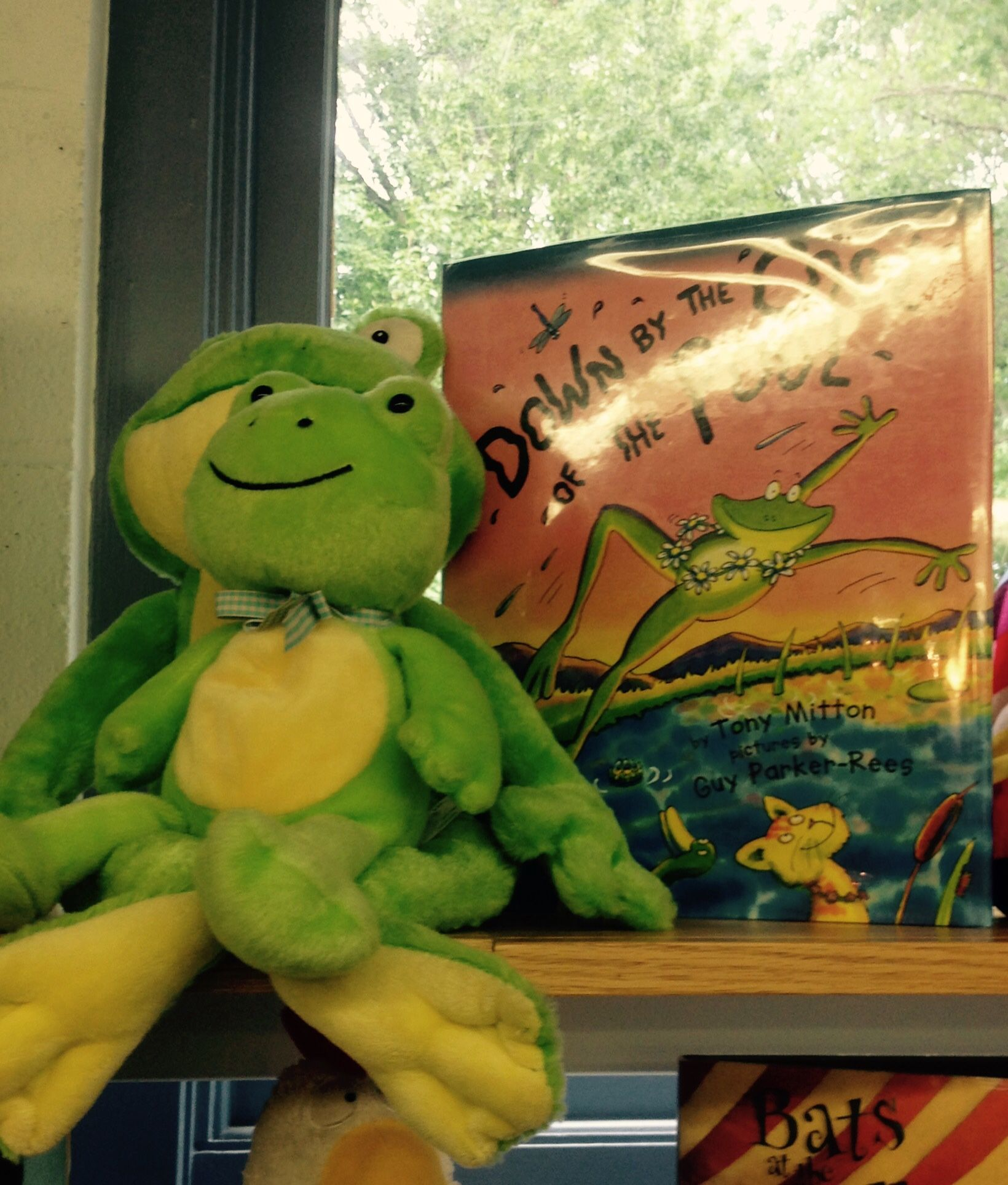 Pin by Berkeley Heights Public Library on Fleur the Frog | Pinterest ...