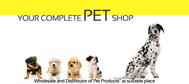 Online Pet Store In Kolkata Pet Shop In Kolkata Pet Shop In Delhi Pet Store In Kolkata Buy Pets Pet Shop Pets