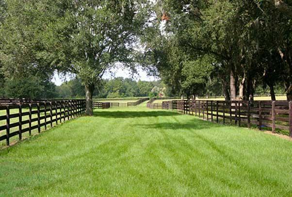 Horse Farm for Sale | 65 Acre Ocala Area Training Center