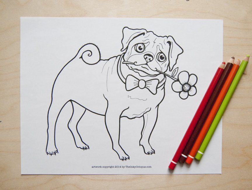 Free Printable Pug Coloring Page From Theinkyoctopus Com