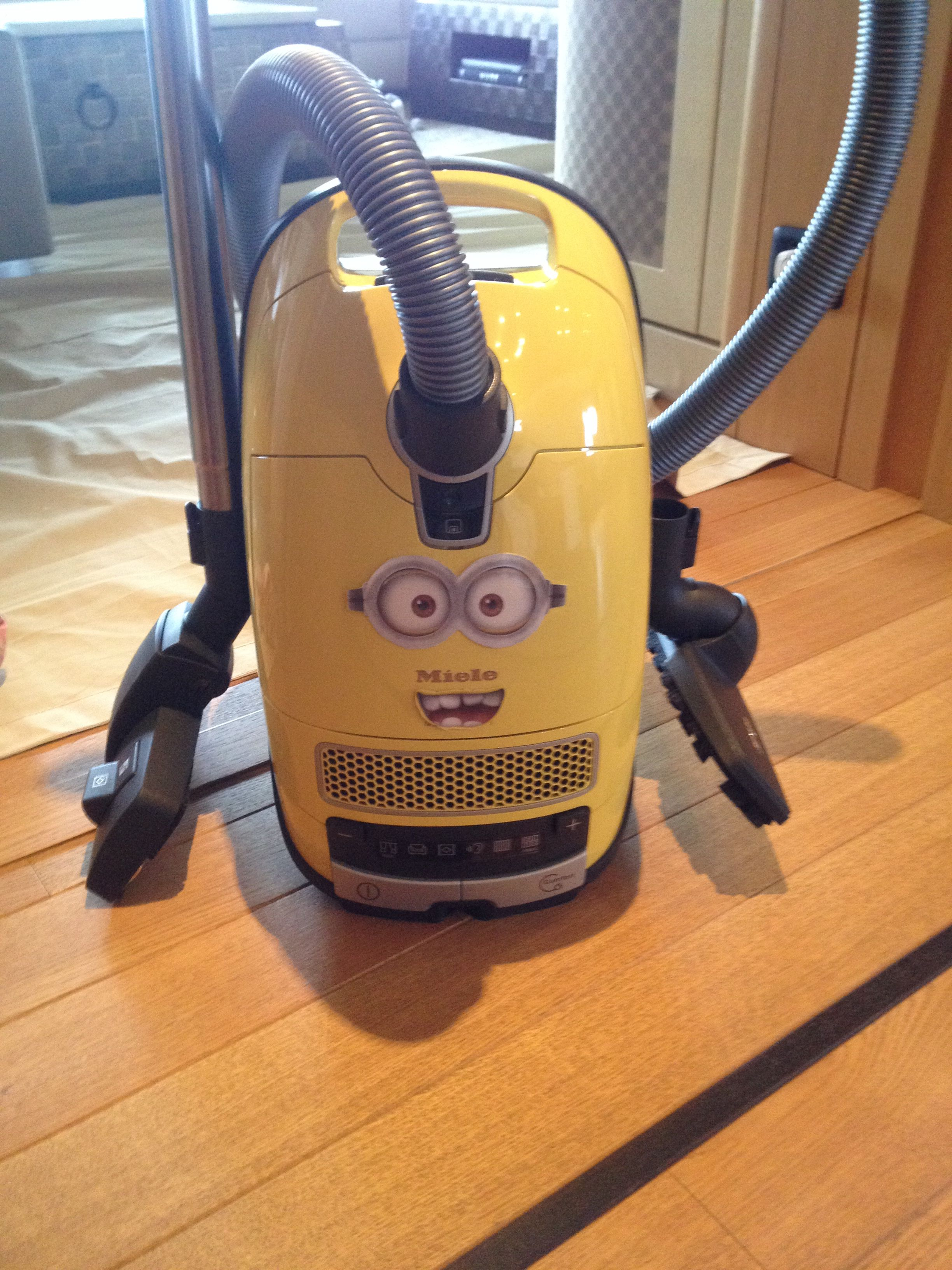 Miele Kookplaat Minion Miele Vacuum Creating Some Entertainment On A Crossing