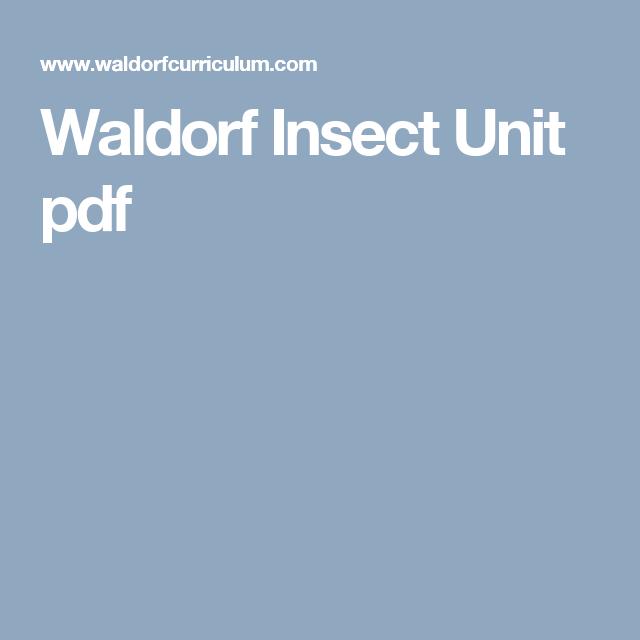 Waldorf Insect Unit pdf
