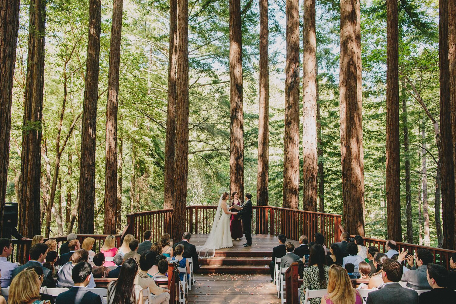 Amphitheatre Of The Redwoods At Pema Osel Ling Wedding And Event Venue Santa Cruz Mountains Ca Redwood Forest Photo By Sun Life