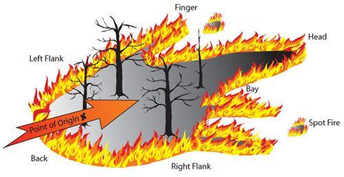 Anatomy Of A Wildfire Forest Fire Wildland Fire Anatomy