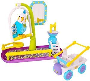 Elizabeth Wants To Name This Bird Disco It Is A Little Live Pets Cleverkeet Little Live Pets Parakeet Toys Toys For Girls