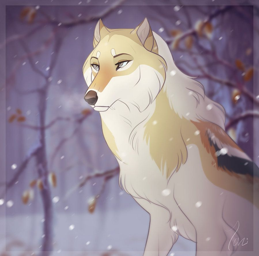 Storm By Tazihound Animal Art Canine Art Anime Wolf