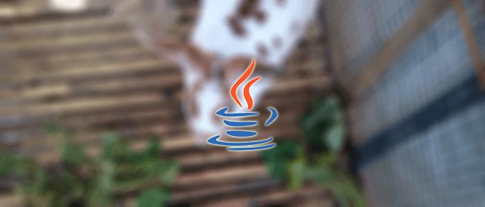 Java   Java Programming Tutorial (Spring, Spring Boot