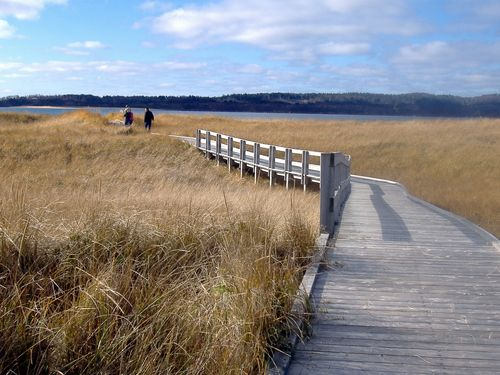 Boardwalk at Port Hood Beach  Wish i was there