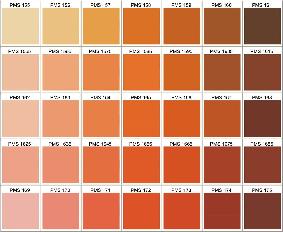 PMS Color Chart - Choose Your Own Silicone Bracelets, Silicone - sample pms color chart