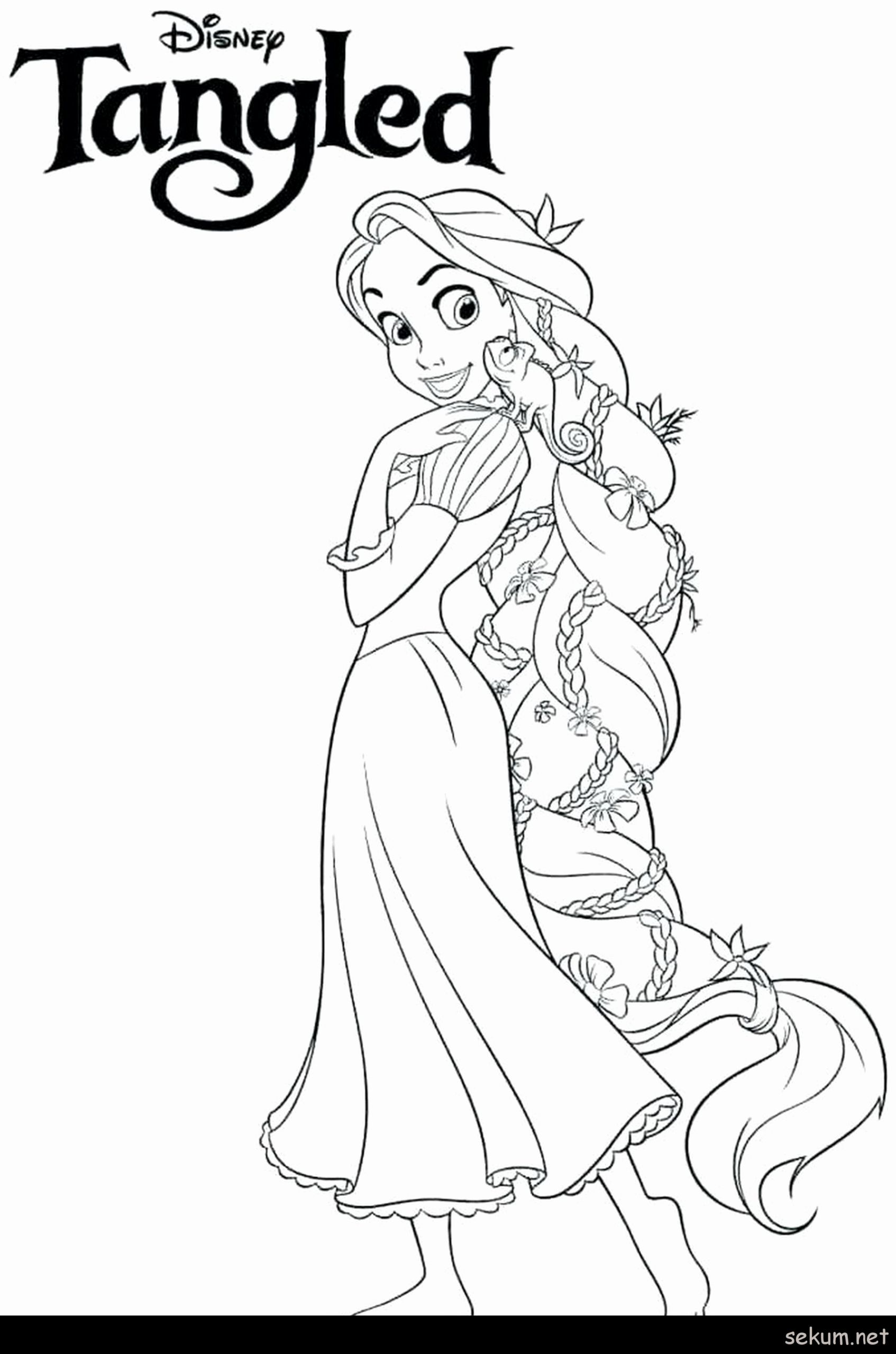 Complex Printable Coloring Pages For Kids Disney Princesses Coloring Pages For K In 2020 Tangled Coloring Pages Disney Coloring Sheets Disney Princess Coloring Pages