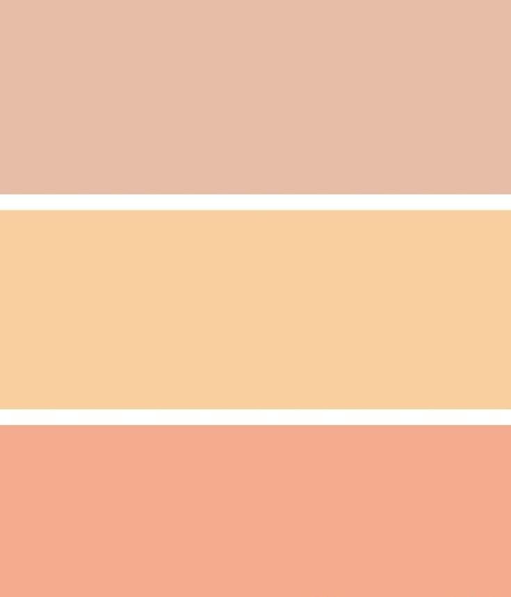 Wandfarbe Farbpalette Hornbach: Aprikose Kann In Verschiedenen Nuancen Vorkommen A