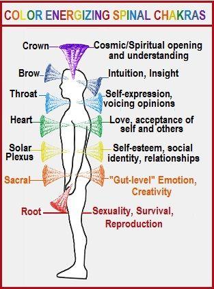 Color Energizing the Spinal Chakras | Energy healing reiki, Chakra, Pranic  healing