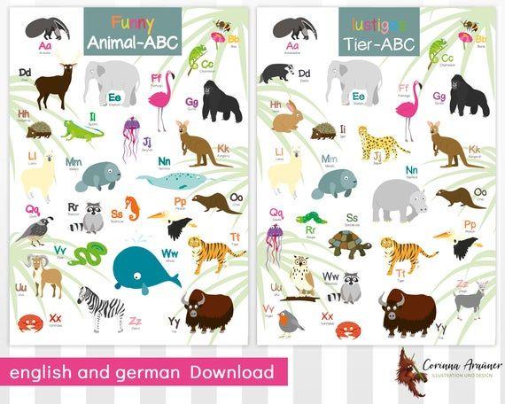 ABCPoster lustiges Tieralphabet Download englisch und