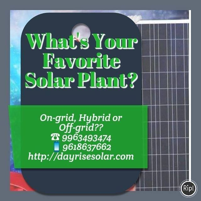 Dayrise Solar Enerdy Updates Solar Solar Power Renewable Energy