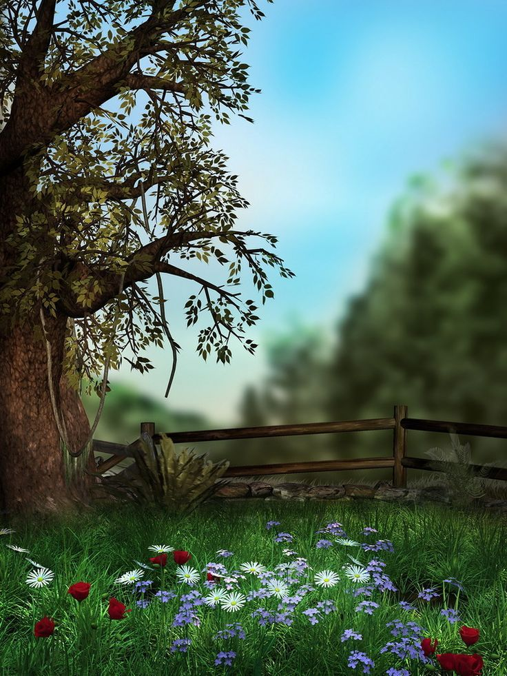 coleccion naturaleza: | Clipart, Frames and backgrounds | Pinterest ...