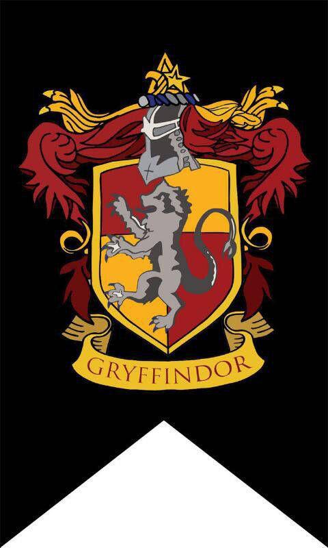 Harry Potter House Flag Banner Gryffindor Slytherin Ravenclaw