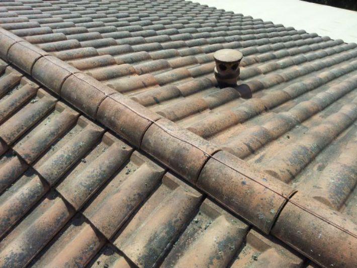 Le cuivre anti-mousse pour une toiture | Anti mousse ...
