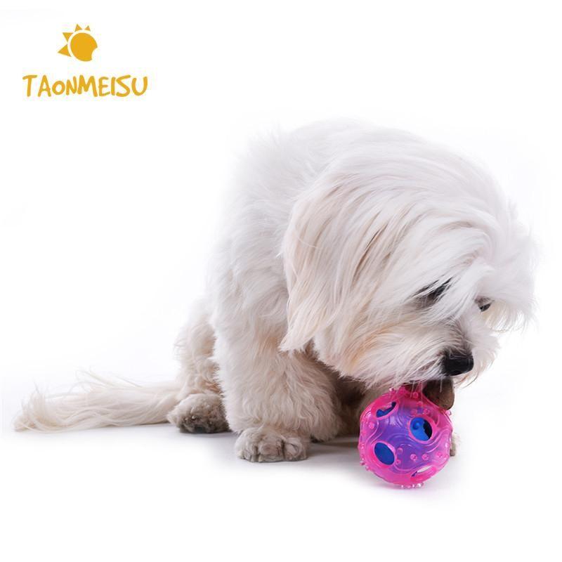 Newest Dog Treat Ball Dog Treats Pet Supplies Pets
