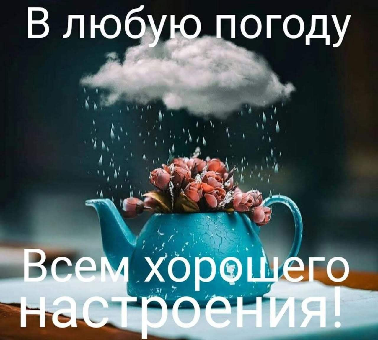 Поздравлять, картинки настроения в любую погоду