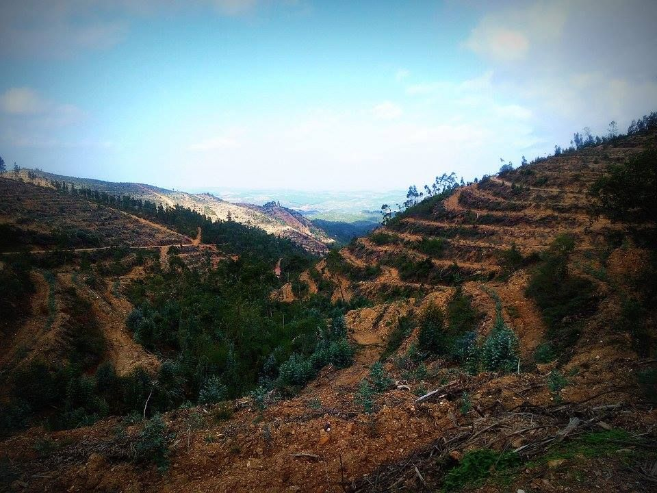 Pohoří Monchique