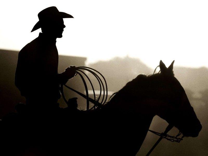 Les Fonds D Ecran Un Cheval Monte Par Un Cow Boy Avec Un Lasso Esprit Rodeo Silhouette De Cheval Cheval