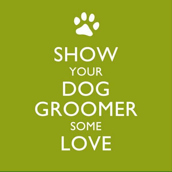 Tip Ur Groomer Dog Grooming Salons Pet Grooming Salon Dog