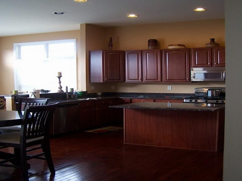 Wall Color For Kitchen With Dark Cabinets Neutral Best