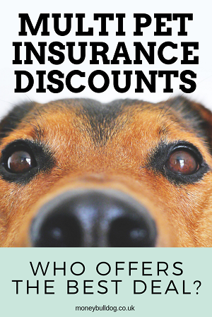 Multi Pet Insurance Discounts Who Offers The Best Deal Pet