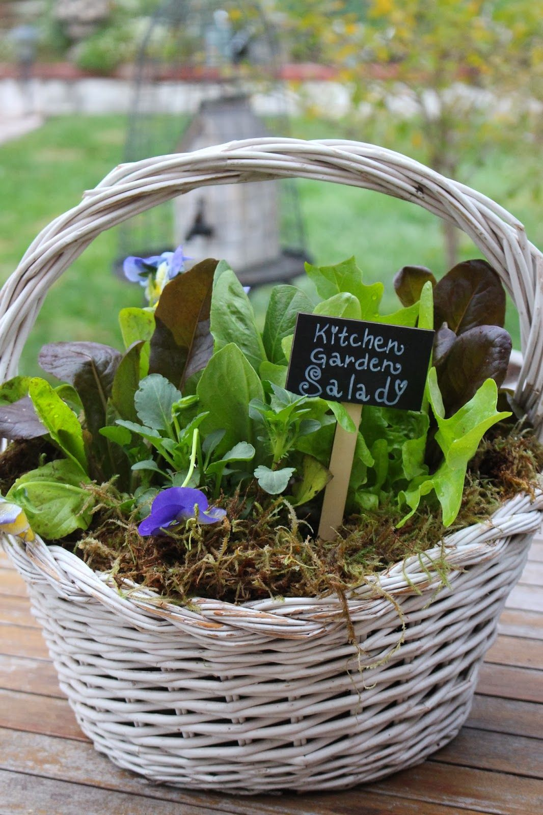 Rooted In Thyme Making Kitchen Garden Salad Baskets For