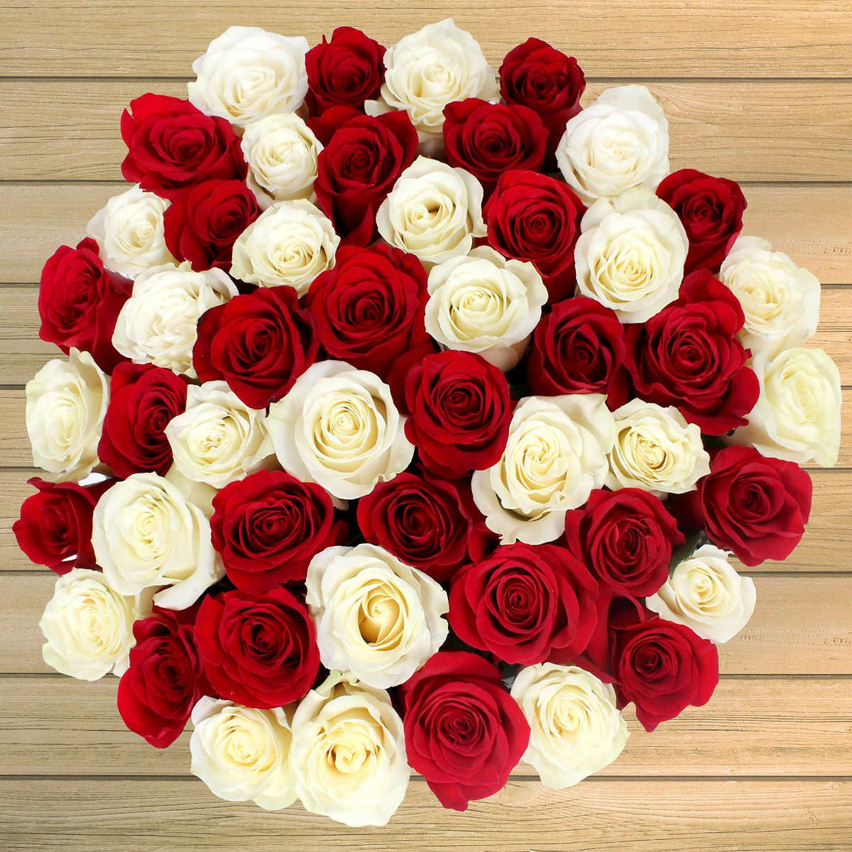 Red & White Roses, 50 an order at Costco 50. Shipping