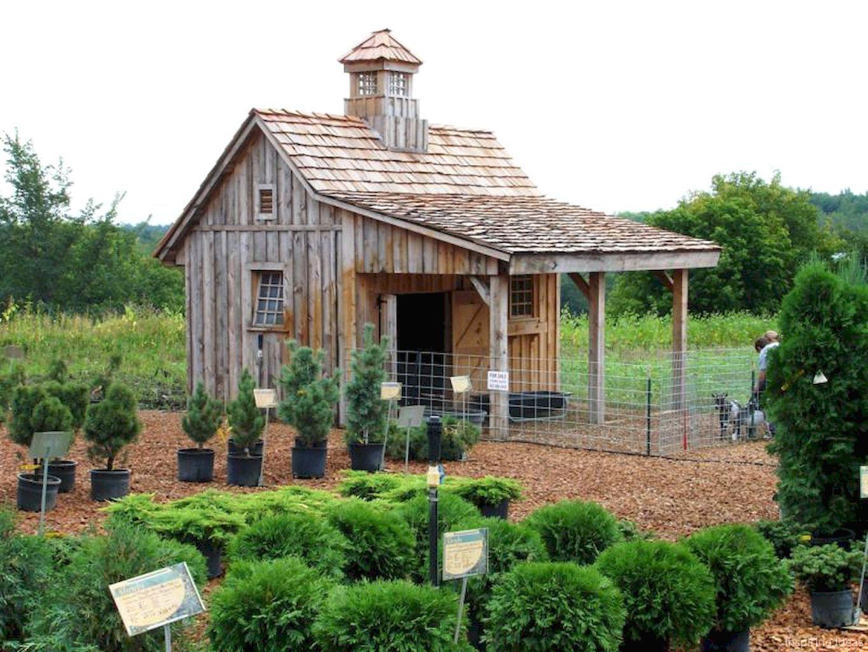 50 awesome garden shed design ideas shed pinterest coops rh pinterest com