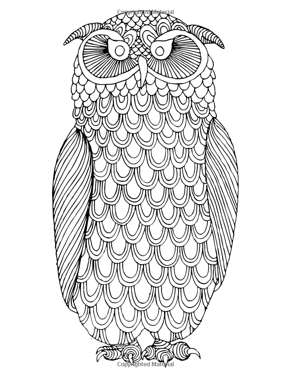 Owls Coloring Book: A Stress Management Coloring Book For Adults ...