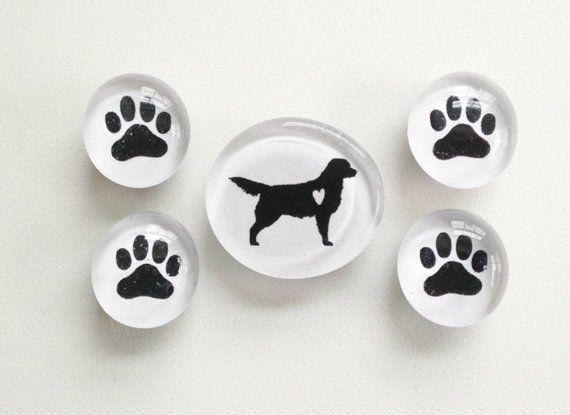 Golden Retriever Glass Magnets Golden Magnet Set Dog Magnets