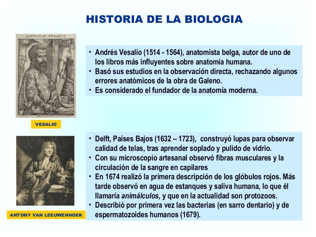 HISTORIA DE LA BIOLOGIA • Andrés Vesalio (1514 - 1564), anatomista ...