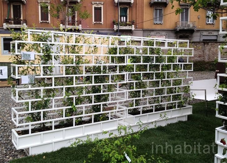 Green bookshelf by Luca Pegolo for Nautinox Living