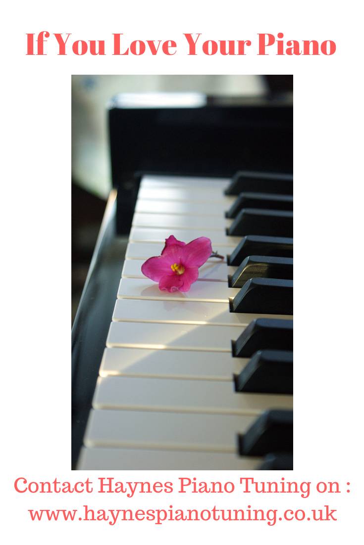 I love my work as a Piano Tuner/Technician and this pin ...