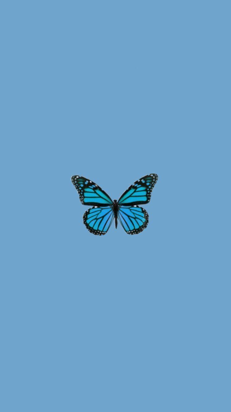 Blue Aesthetic Butterfly Lock Screen In 2020 Butterfly Wallpaper Iphone Iphone Wallpaper Tumblr Aesthetic Butterfly Wallpaper