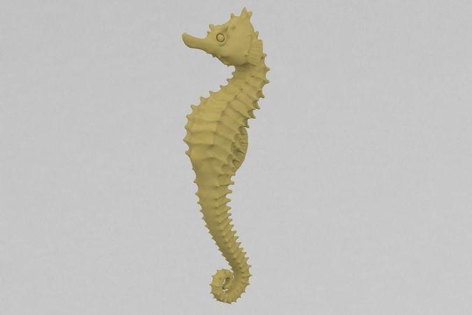 Pin On Seahorses 3d Print