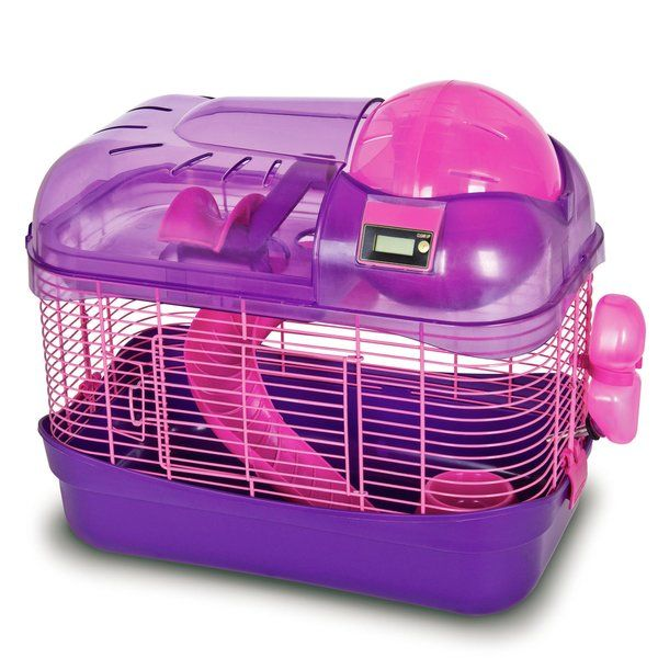 Best Hamster Toys DYI And Store Bought