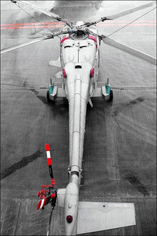 RN LYNX Free photos prints, Photo printing, Photo storage