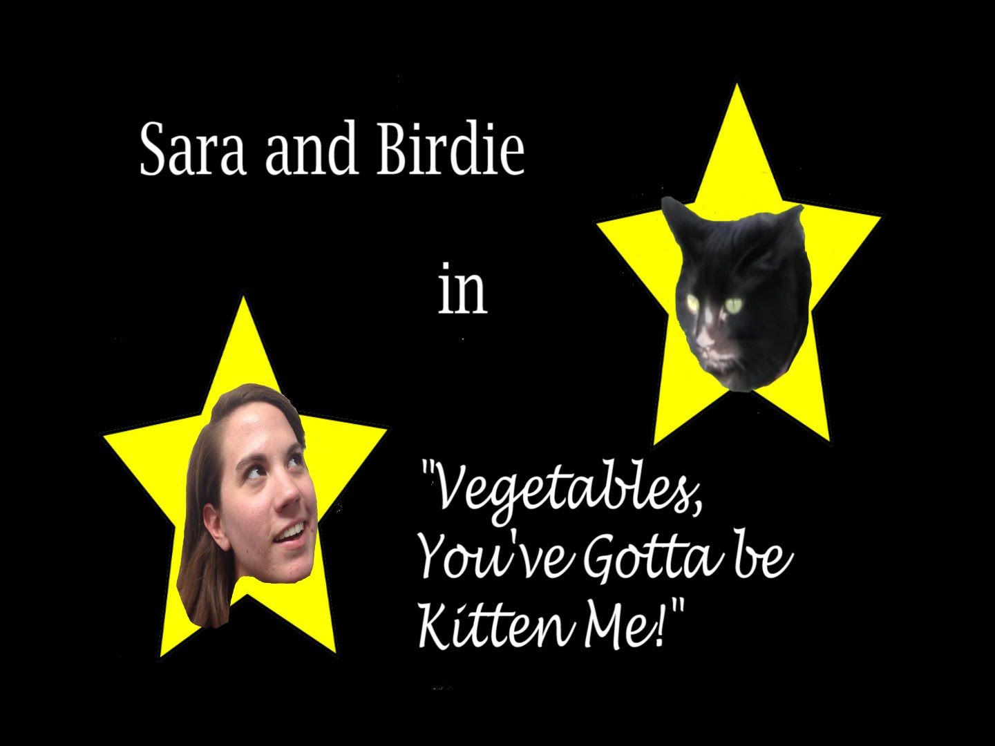 When you put Sara, a vegetarian, and Birdie, an average carnivorous cat, in the same house, you sure can bet there will be crazy shenanigans afoot. How will this odd couple ever decide what to eat?