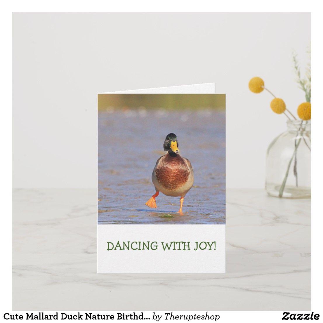 Cute mallard duck nature birthday card mallardducks