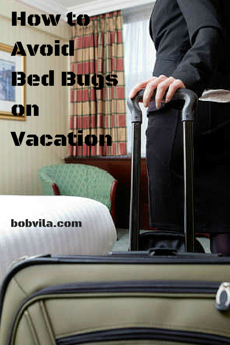 10 Essential Tips to Avoid Bed Bugs When Traveling Bed