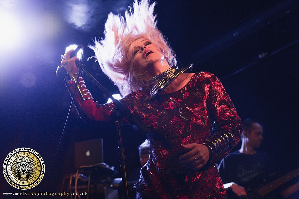 Toyah Willcox 2014 Intergalactic Ranch House Tour Photo By